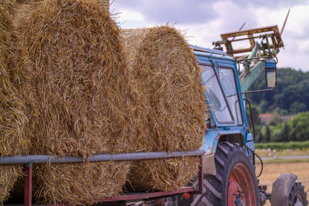 harvesting with tractor haystacks loaded