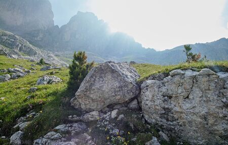 view of Gruppo del Catinaccio (Rosengarten Group) Dolomites, Hirzelweg
