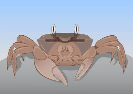 nipper: Crab on a rock against the sky Illustration