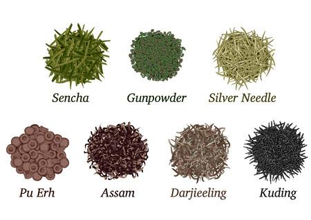 gunpowder tea: Set of different types of tea poured slide on a white background