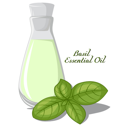 bung: A small bottle of essential oil of basil