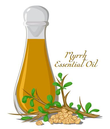 Bottle with essential oil of Myrrh with a branch and some resin Vektoros illusztráció