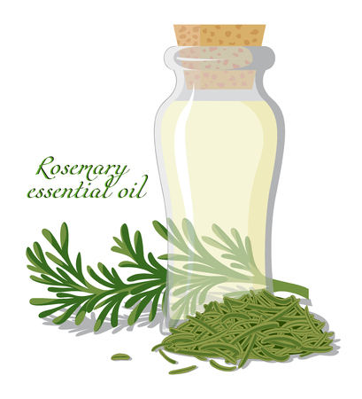 A bottle of essential oil, shown between a fresh sprig and dried rosemary leaves