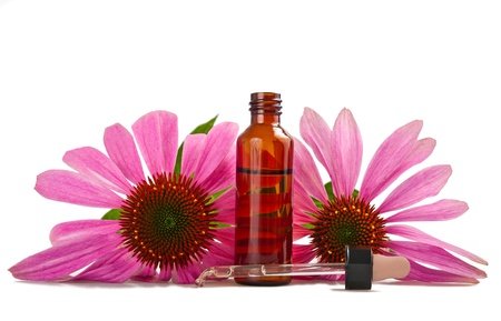 Alternative health whit echinacea flower Stock Photo - 9970382