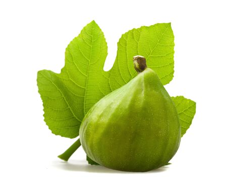 fig leaf: Fig with leaf isolated on white Stock Photo