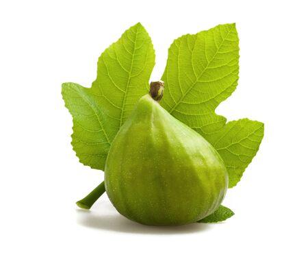 feuille de figuier: Fig. avec feuilles isolées sur blanc Banque d'images