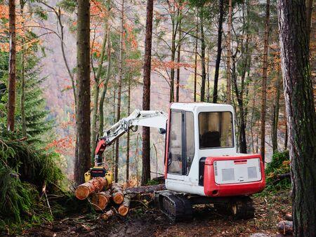 deforestacion: Operador de la máquina herramienta para trabajar en el bosque Foto de archivo