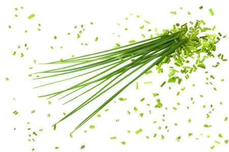 Bunch chives  isolated on white