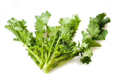 Turnip tops isolated on white