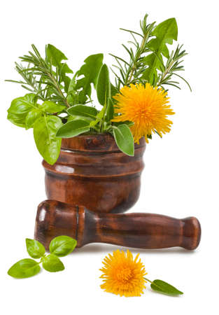 rosemary flower: Rosemary, sage, basil and dandelion in a mortar