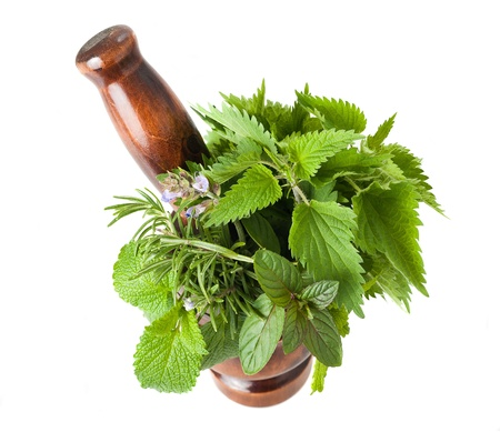 wild herbs: Rosemary, sage,peppermint,lemon balm and nettles in a mortar