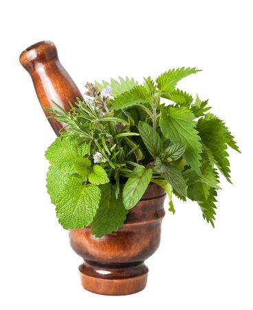 Rosemary, sage,peppermint,lemon balm and nettles in a mortar Stock Photo - 13167484