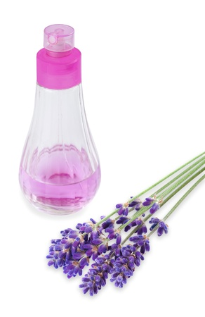 lavender flower with dispenser isolated on white  Stock Photo - 14206163