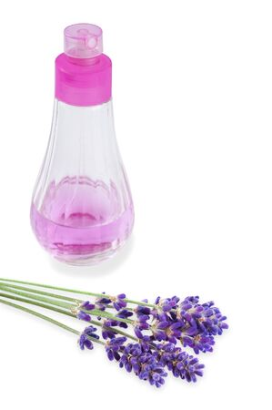 lavender flower with dispenser isolated on white Stock Photo - 14206165