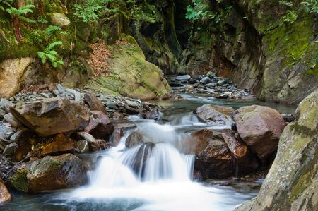 torrent: Alpine waterfall with motion blur