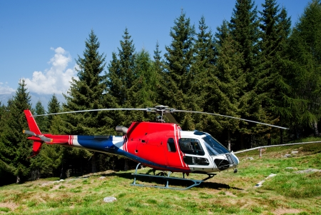 airborne vehicle: helicopter lands to in a meadow