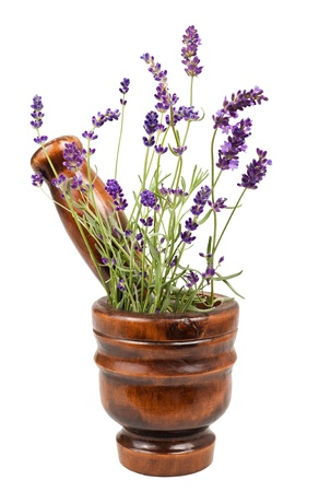 lavender in a mortar isolated on white Stock Photo - 15820660
