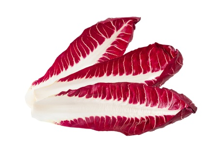 red chicory leaves isolated on white photo