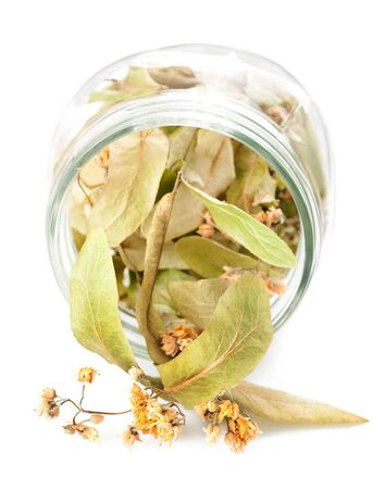 herbalist: linden leaves and flowers dried