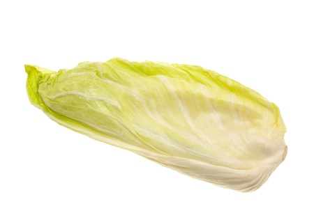 gentile: Green salad isolated on white