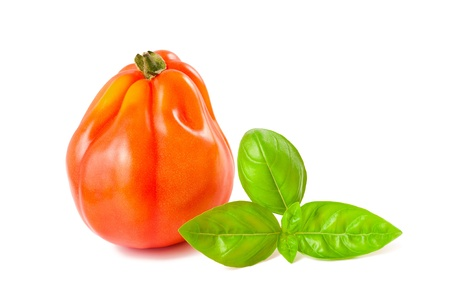 heirloom: beefsteak tomato and basil  isolated on white