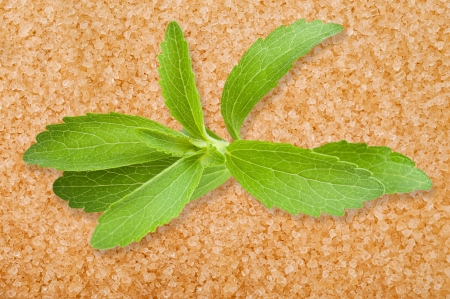Stevia leaves on cane sugar  background photo