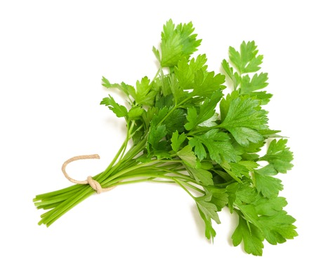 parsley bunch  isolated on white background Stock Photo