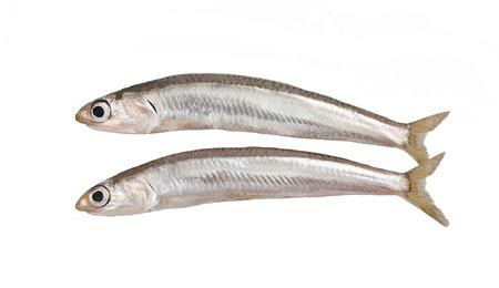 verse spieringen vis op een witte Stockfoto