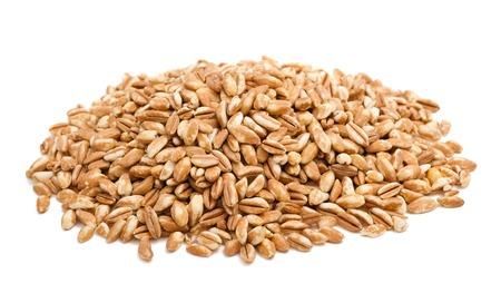 白い背景に分離されたスペルト小麦ヒープ