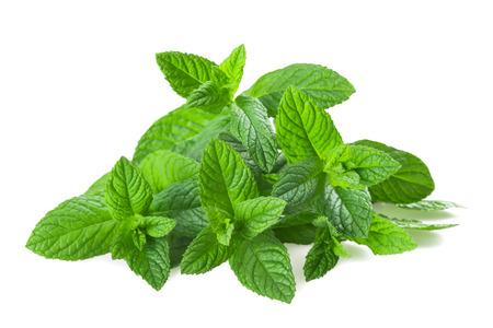 Fresh mint isolated on white background Stock fotó - 27836716