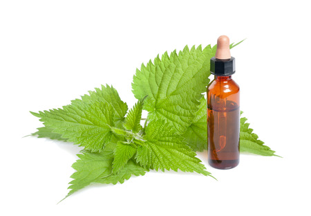 Nettle extract with bottle isolated on white