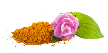 Curcuma flower and  powder isolated on white 写真素材