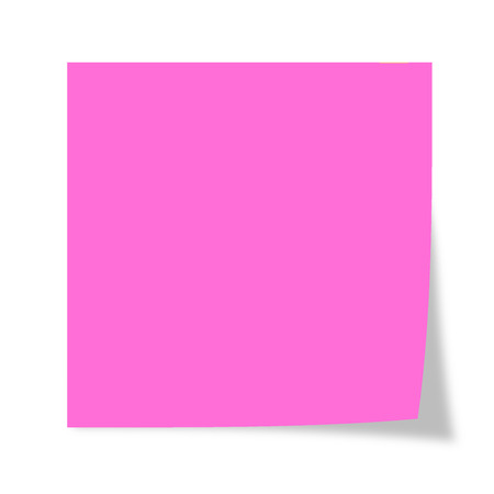Pink isolated on a white background