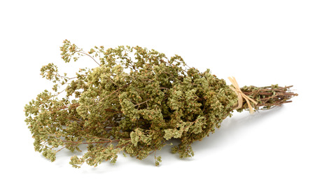 dried: Dried oregano bouquet isolated on white