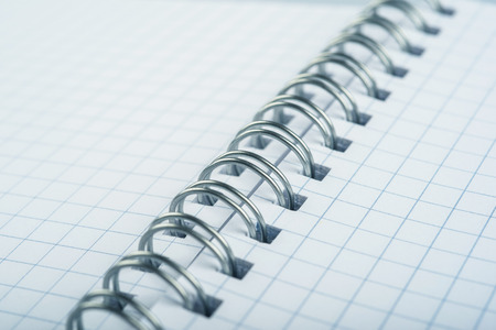 looseleaf: loose-leaf notebook with sheets squared