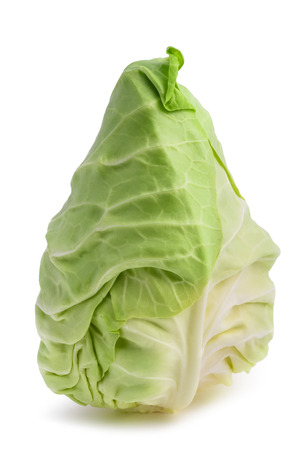 Fresh pointed cabbage isolated on white background  Imagens