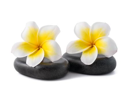 Fleurs de frangipanier sur les galets zen isolés sur blanc Banque d'images - 87639471