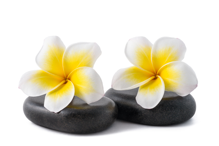 Frangipani flowers on zen pebbles isolated on white Stock fotó