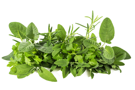 Fresh herbs mix isolated on white background