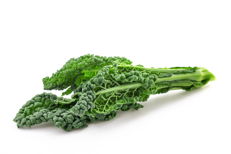 black cabbage, italian kale isolated on white background 写真素材
