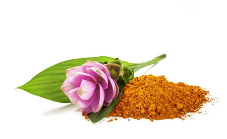 Curcuma flower and powder isolated on white Stock fotó