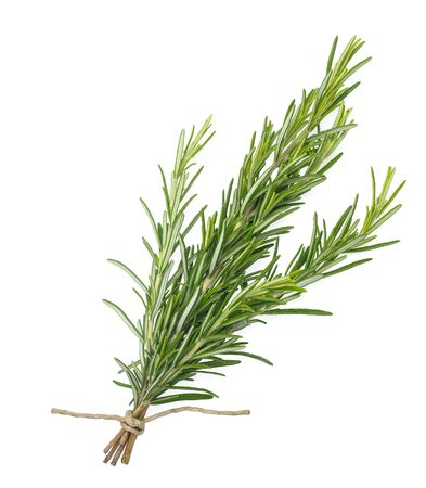 rosemary bunch tied isolated on white background Stockfoto