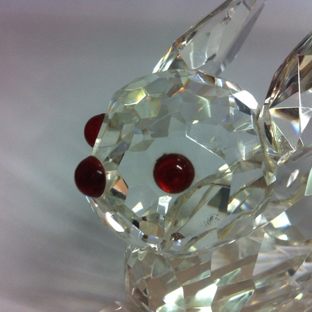 nose: Close up crystal rabbit