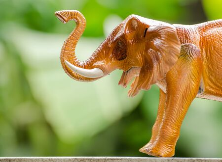 head toy: The elephant head made by plastic as a toy
