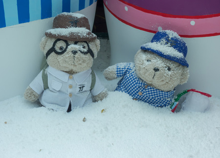 snow ground: The bear dolls lovely concept in the snow ground