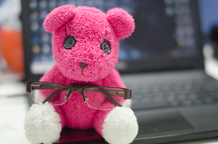 pink teddy bear: The pink teddy bear ait on the laptop with glasses