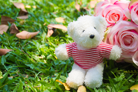Teddy Bear with heart and roses in the background Stock Photo