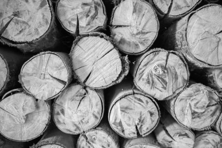 Black and white of wood as background