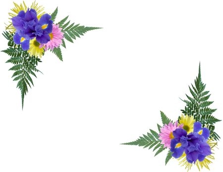 iris flower: Floral photo corners.