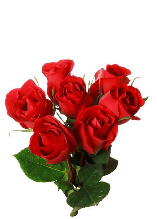 Macro of a bouquet of red roses, isolated on white background.